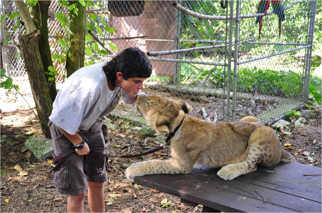 Lion Love, Terine and Mus. Photo by James Harvey. Rights Reserved.